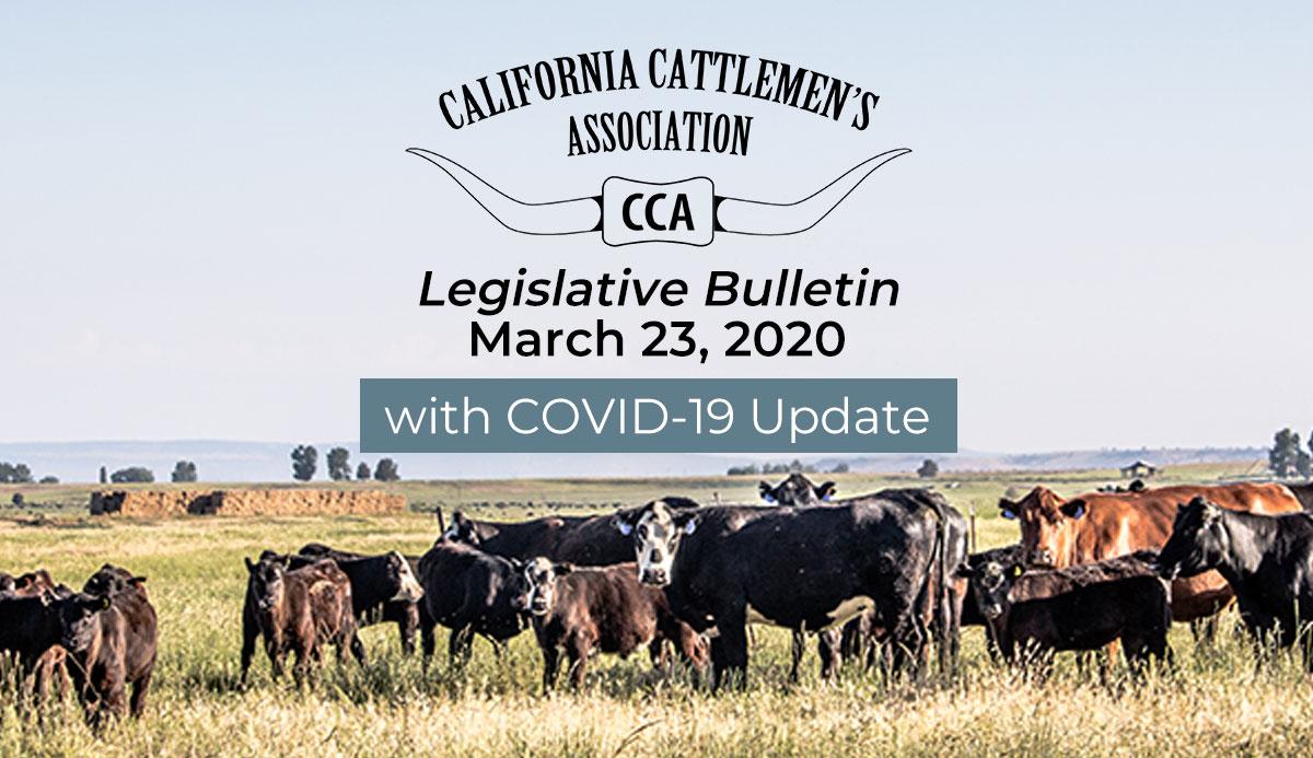 3/23 Legislative Bulletin with COVID-19 Update