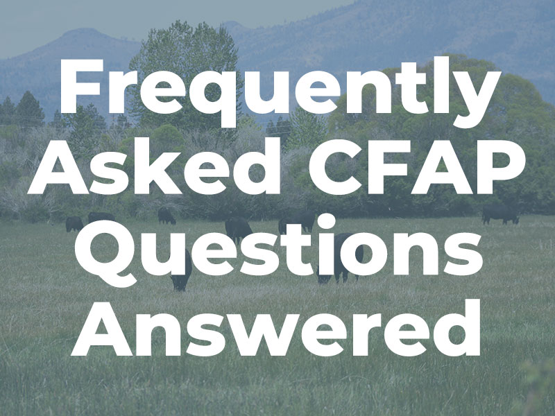 Frequently Asked CFAP Questions Answered