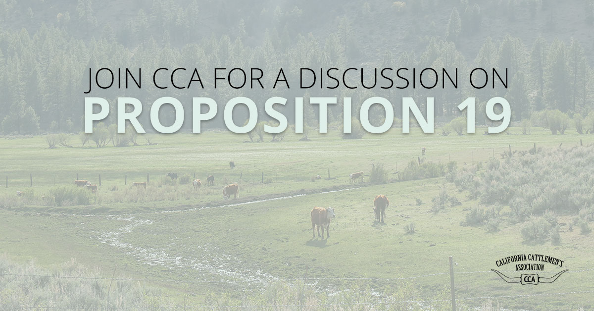 Join CCA for a Discussion on Prop 19