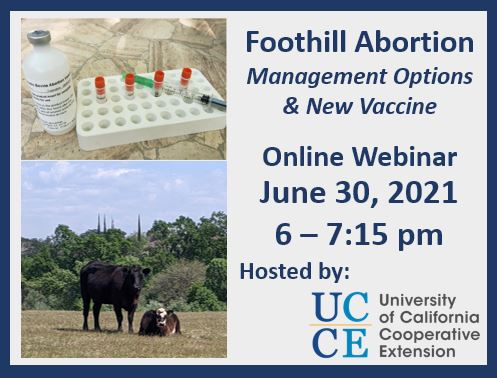 Foothill Abortion Management Options and New Vaccine Webinar